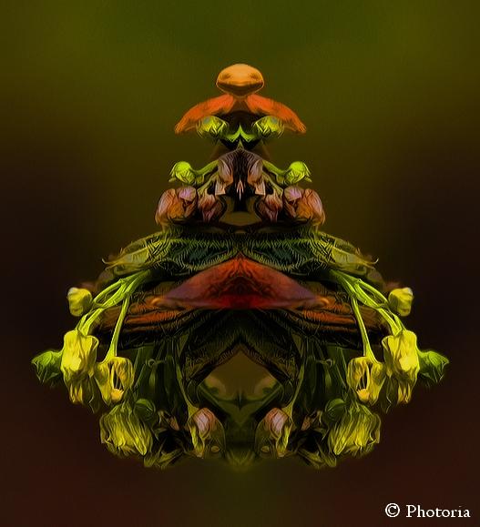 Symmetrized_21c