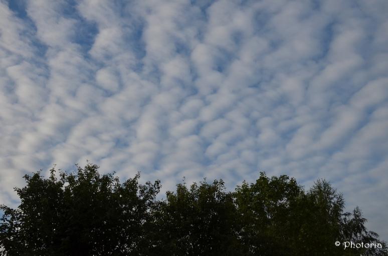 Clouds_12a