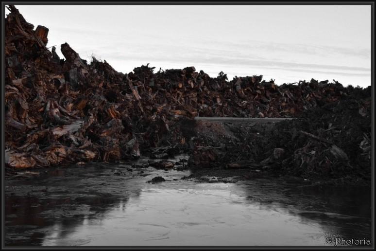 25 O'Clock-BlackWater