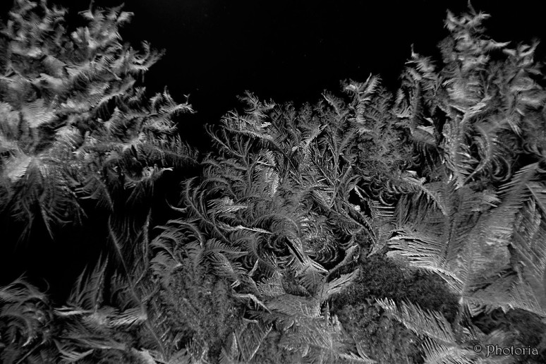 IceCrystals2