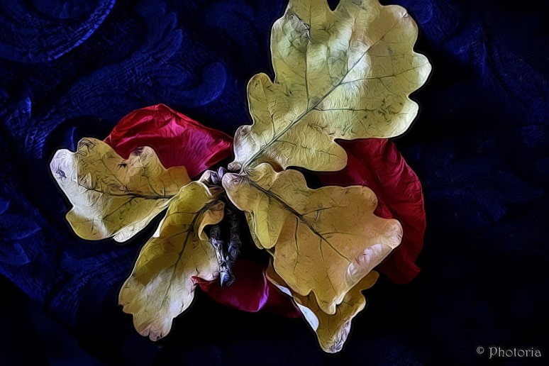 leaf_6