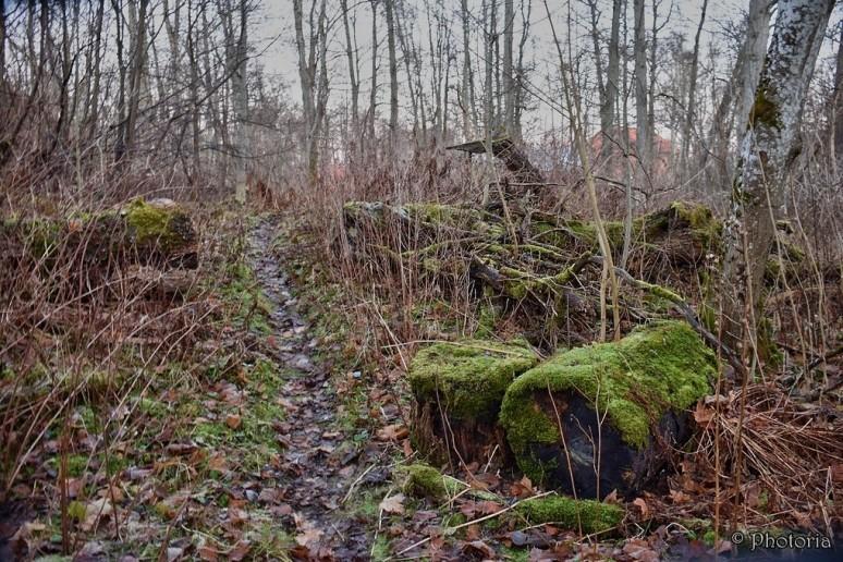 karlslundculturereserve_8