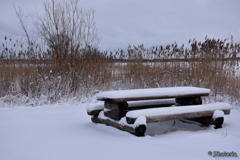 benches_9f